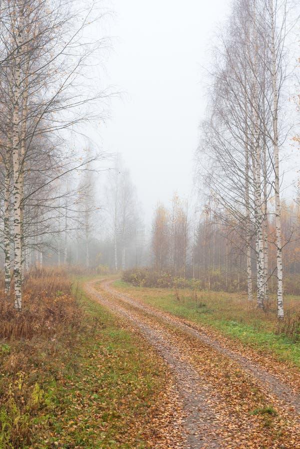 Enrolamento da estrada de terra com a paisagem nevoenta do outono imagens de stock