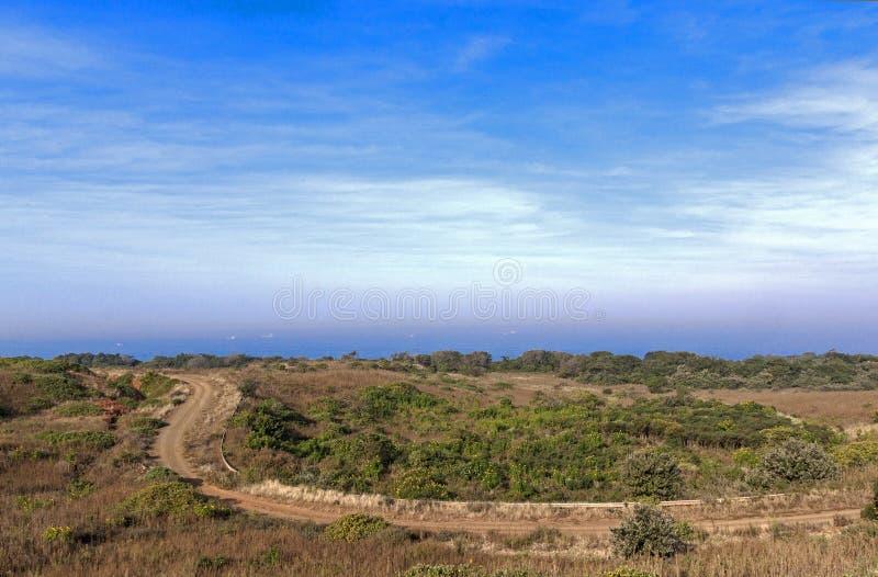 Enrolamento litoral da estrada de terra através da vegetação natural para OC imagens de stock royalty free