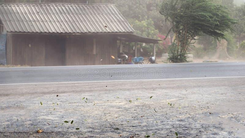 Enrole a poeira e as folhas fundidas tempestade na estrada foto de stock royalty free
