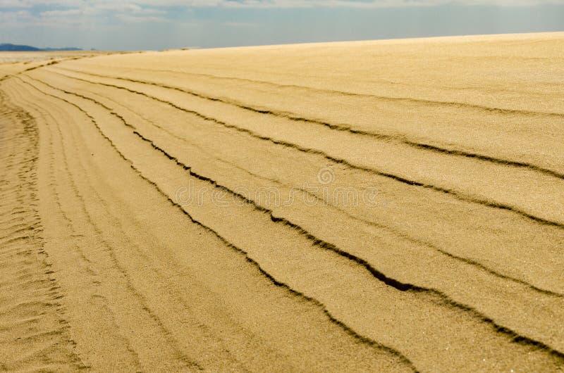 Enrolle las líneas en la duna de arena - perspectiva imagenes de archivo