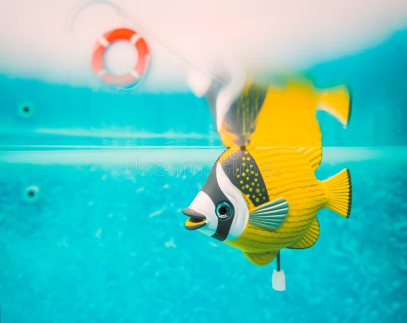 Enrolle para arriba el submarino de los pescados del juguete mecánico en una piscina fotos de archivo libres de regalías