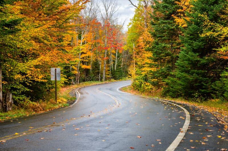 Enroulement Forest Road Dotted avec les feuilles tombées images stock
