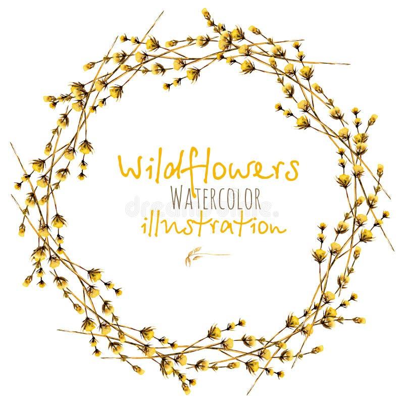 Enrruelle, circunde la frontera del marco con los wildflowers secos amarillos ilustración del vector