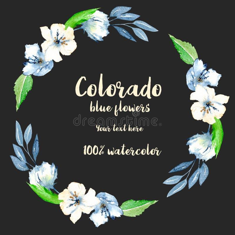 Enrruelle, marco del círculo con las flores azules y blancas simples de la acuarela, las hojas y las ramas stock de ilustración
