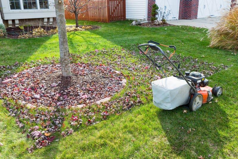 Ensachage d'herbe dans la chute dans le voisinage photographie stock
