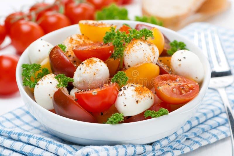 Ensalada con la mozzarella, las hierbas frescas y los tomates de cereza coloridos imágenes de archivo libres de regalías