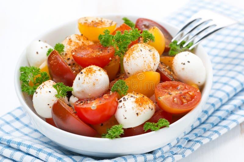 Ensalada con la mozzarella y los tomates de cereza coloridos en un cuenco fotografía de archivo libre de regalías