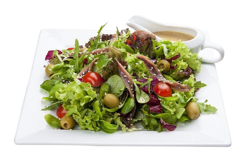 Ensalada con las anchoas y las verduras en una placa blanca fotografía de archivo