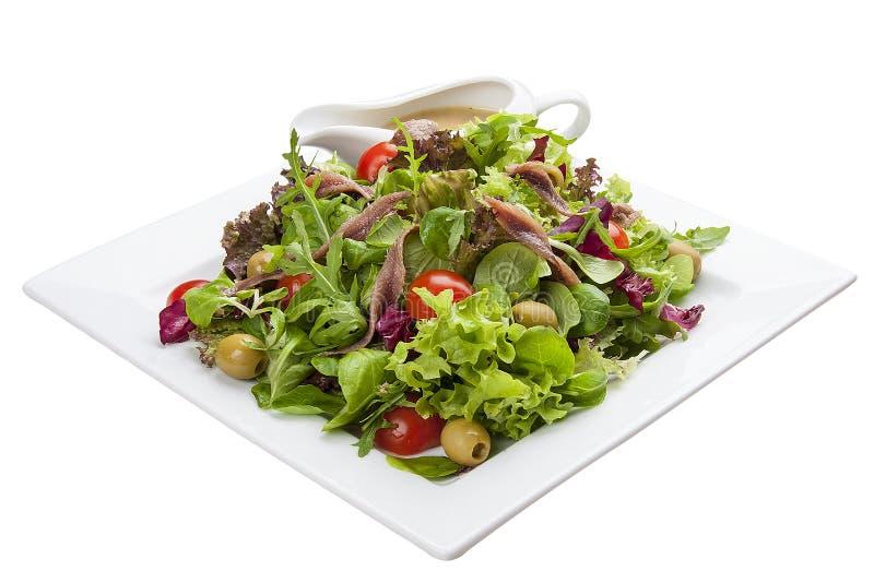 Ensalada con las anchoas y las verduras en una placa blanca imagen de archivo