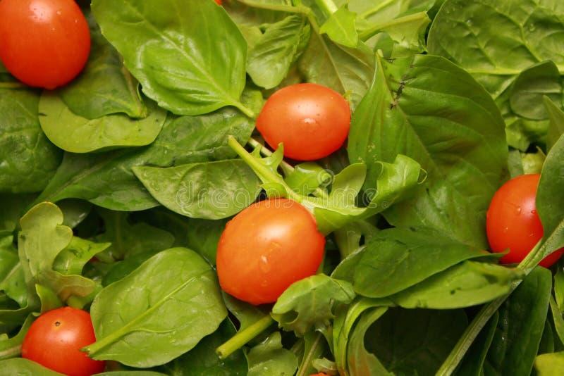 Ensalada con los tomates de cereza fotos de archivo