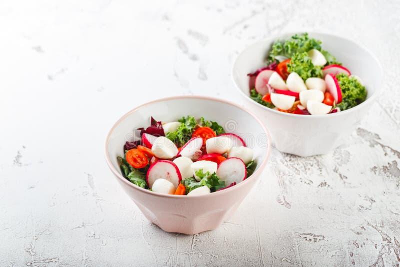 Ensalada con los tomates de cereza, el radsh y la mozzarella, mezcla de la lechuga foto de archivo