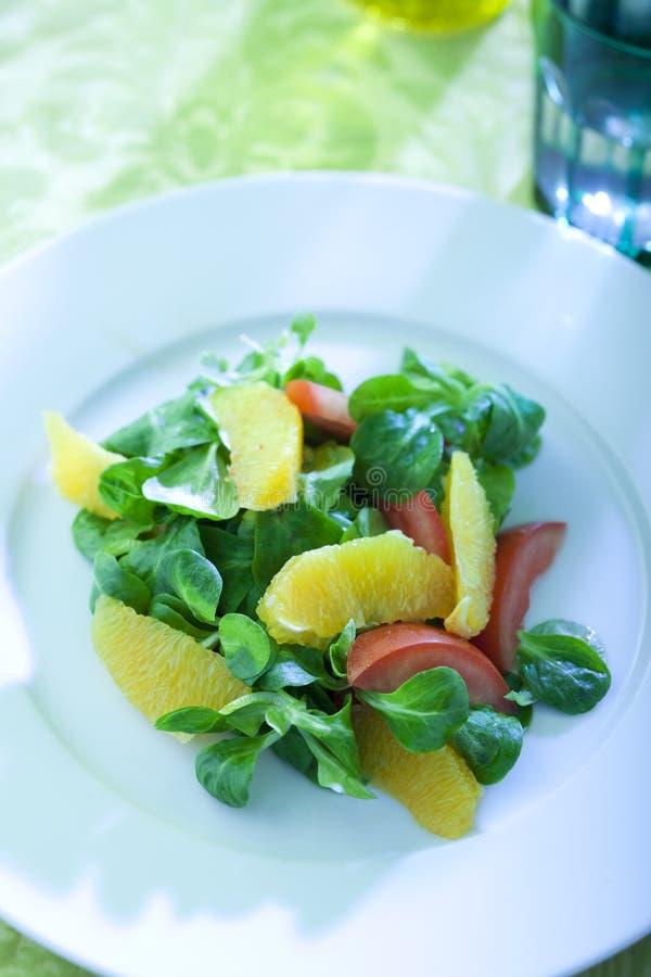 Ensalada con sabor a fruta imágenes de archivo libres de regalías