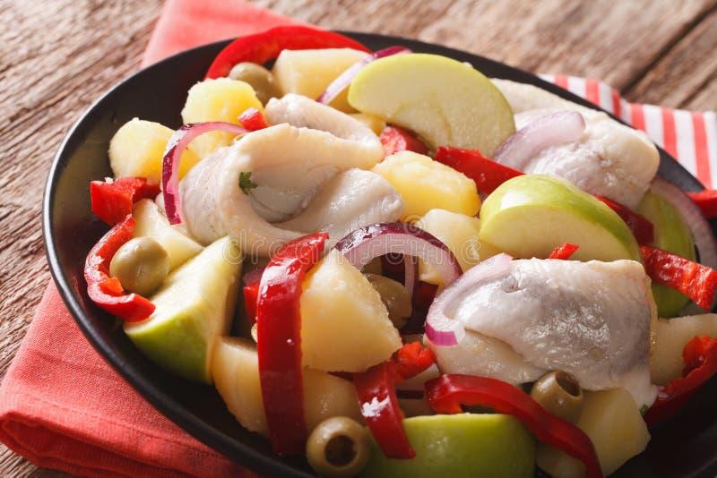 Ensalada de arenques con la patata, manzana verde, cebolla roja, paprikas imagen de archivo libre de regalías
