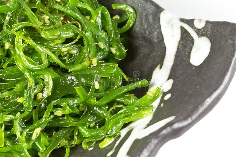 Ensalada de la alga marina imagenes de archivo