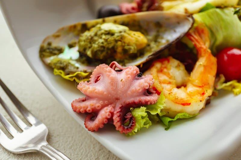 Ensalada de los mariscos, porción del restaurante, comida apetitosa fotos de archivo libres de regalías