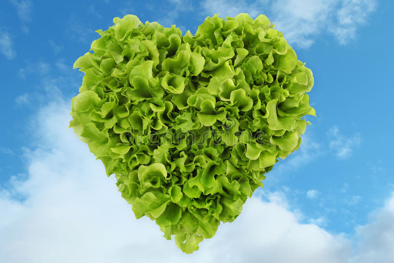 Ensalada del corazón en el cielo ilustración del vector