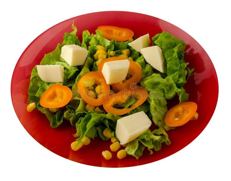 Ensalada del queso, lechuga, maíz, pimienta aislada en el fondo blanco Ensalada vegetariana en una placa imágenes de archivo libres de regalías