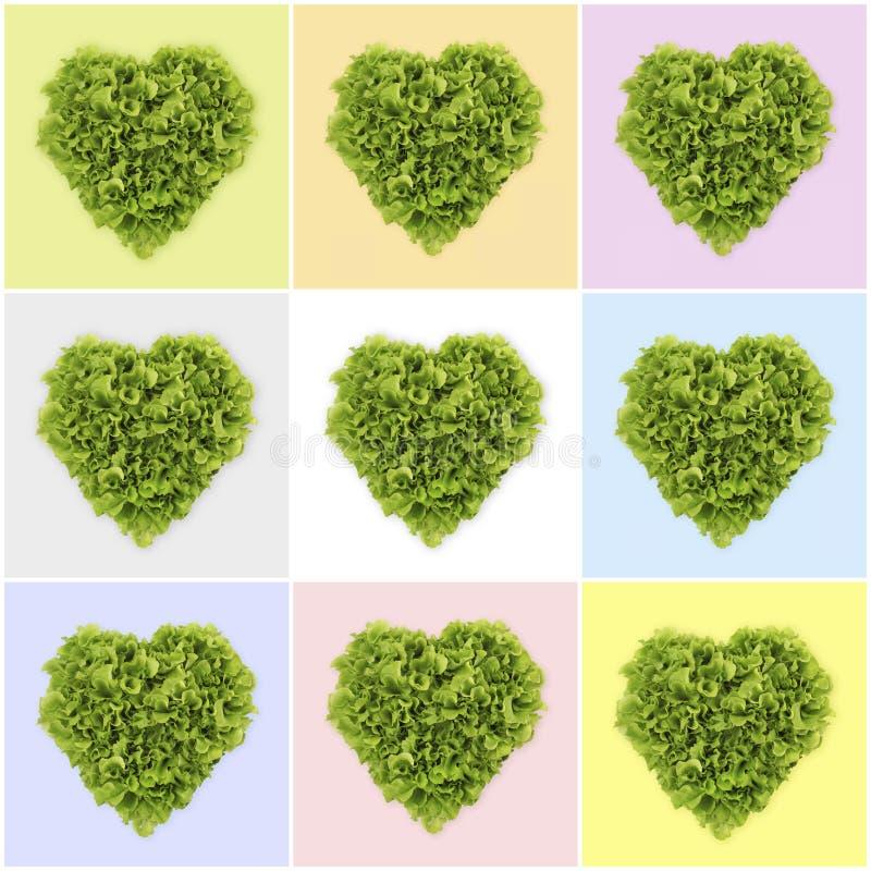 Ensalada en forma de corazón, lechuga en fondo del color foto de archivo