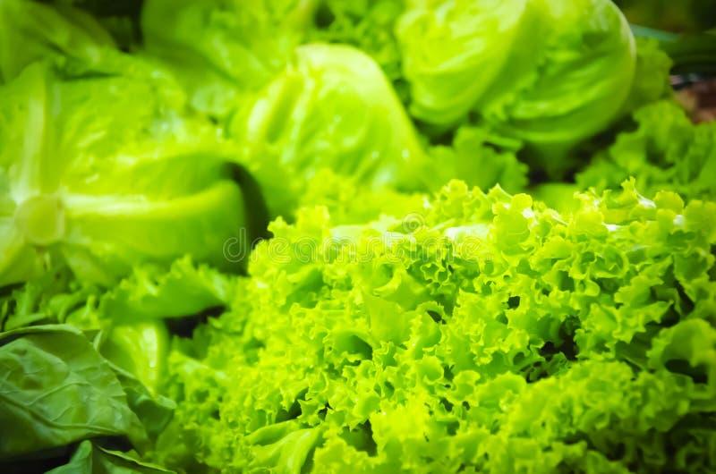 Download Ensalada fresca foto de archivo. Imagen de verde, ingrediente - 41916220