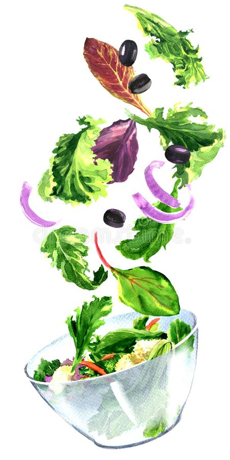 Ensalada fresca con las verduras del vuelo, hojas verdes, comida sana vegetariana, ingredientes que caen en el cuenco, aislado, m ilustración del vector
