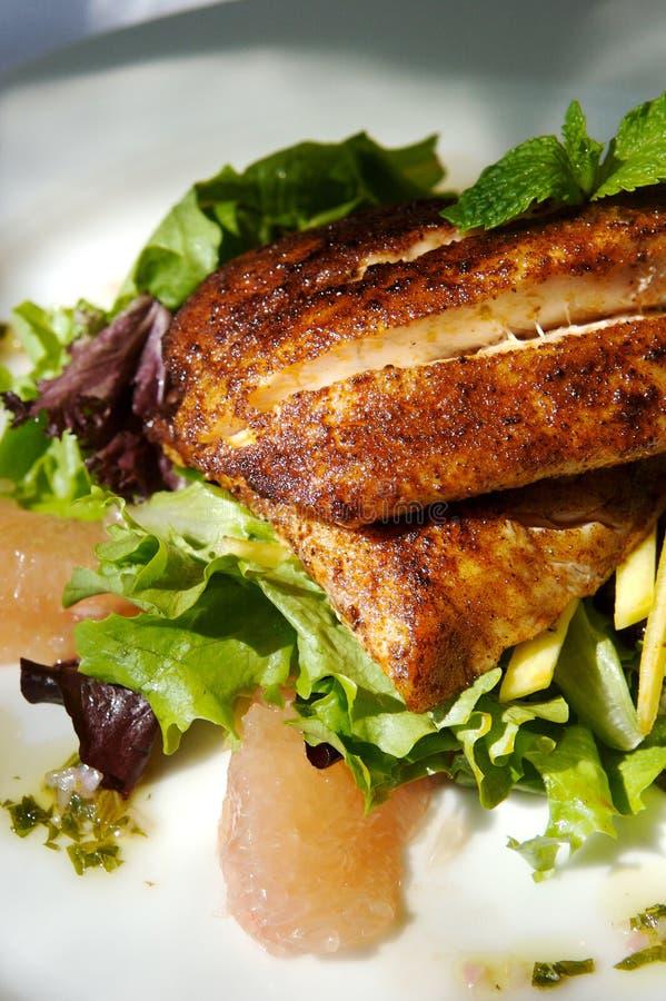 Ensalada gastrónoma del pollo y de la fruta cítrica imagen de archivo