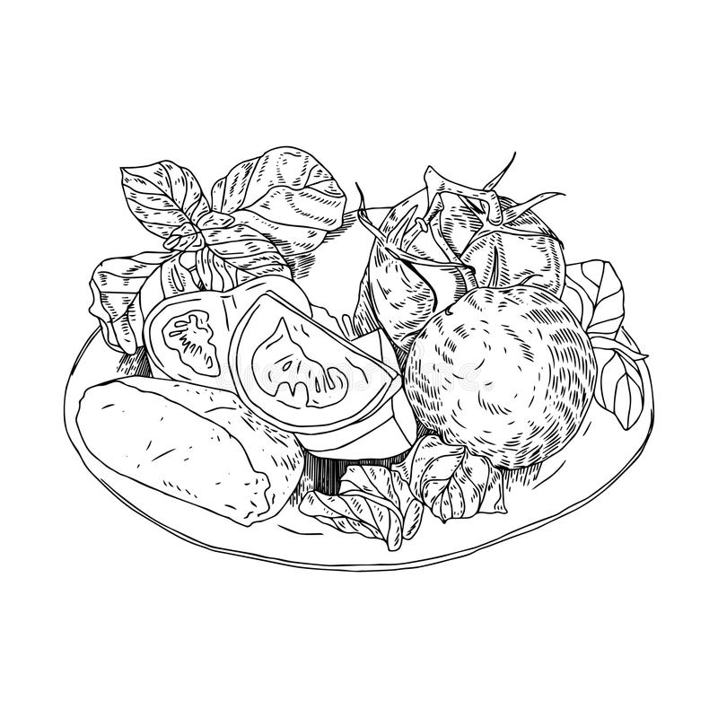 Ensalada griega con las verduras frescas, el queso feta y el aceite de oliva ejemplo dibujado mano de la acuarela, aislado en bla libre illustration