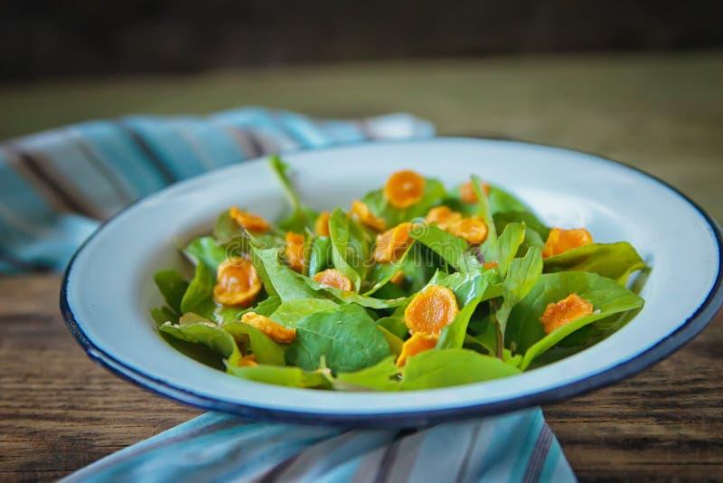 Ensalada vegetal Comida sana con el arugula, zanahoria cortada cocida, aceite de oliva en placa de metal en un fondo de madera os foto de archivo libre de regalías