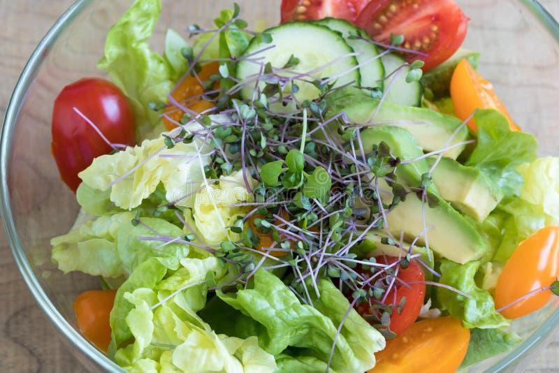 Ensalada vegetal con los microgreens frescos en un cuenco foto de archivo libre de regalías