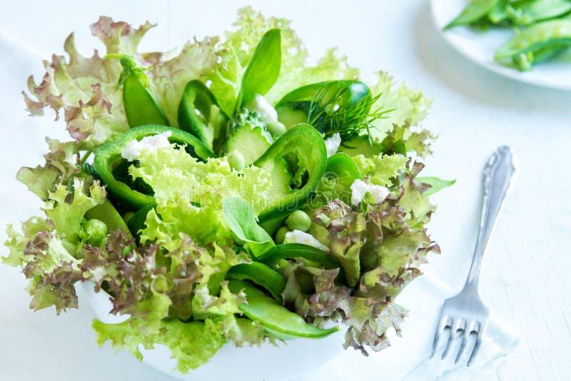 Ensalada vegetal verde imagen de archivo libre de regalías