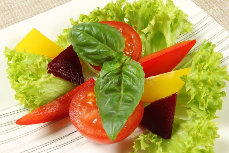 Ensalada vegetariana foto de archivo