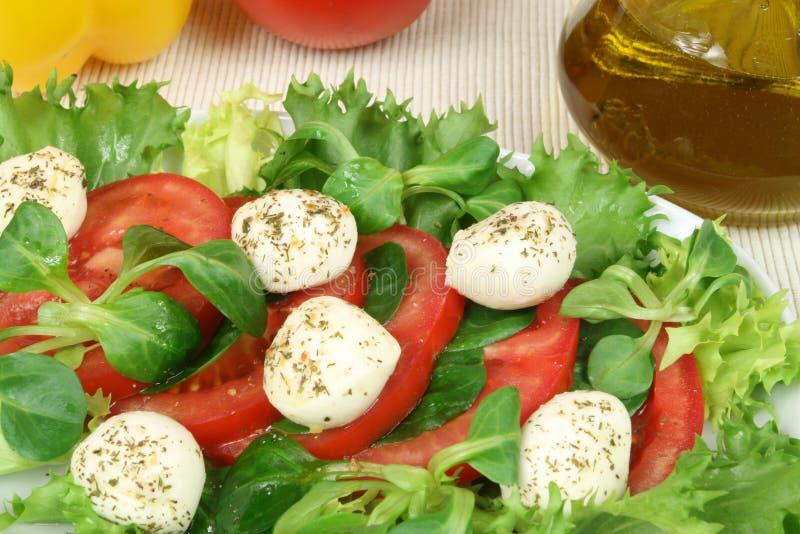 Ensalada vegetariana foto de archivo libre de regalías