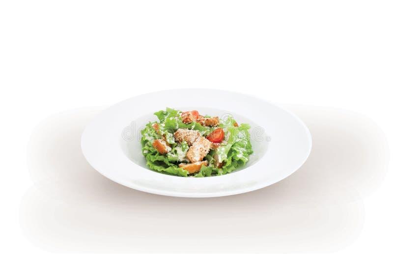 Ensalada verde con la carne del pollo fotografía de archivo