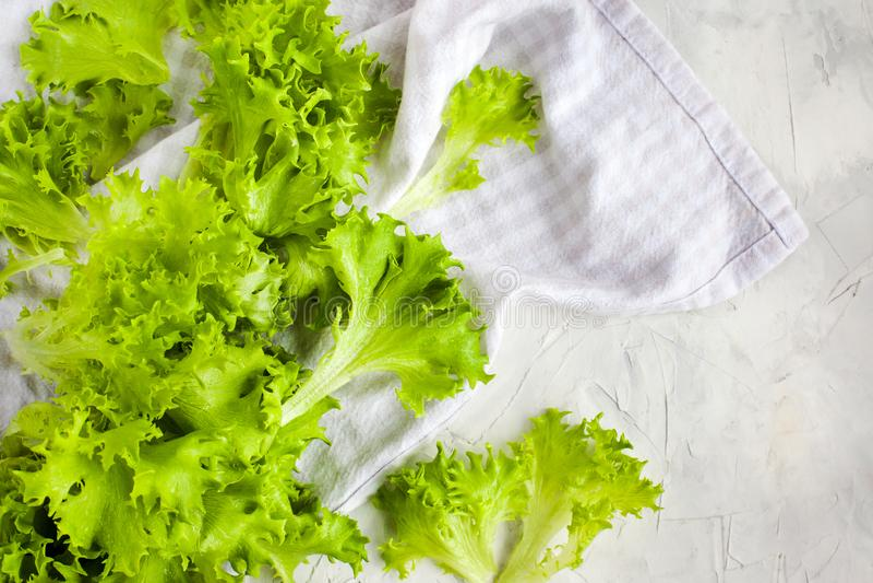 Ensalada verde cruda fresca de la lechuga de iceberg del frillice foto de archivo libre de regalías