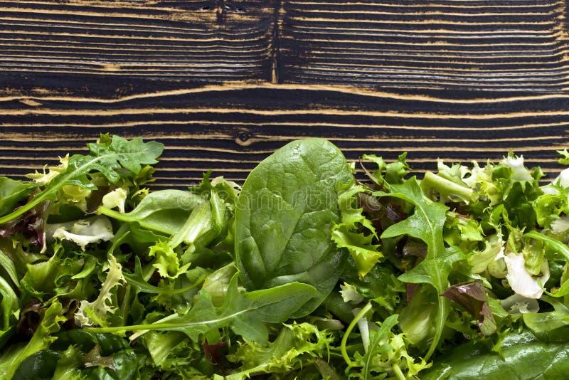 Ensalada verde fresca con espinaca, arugula y lechuga foto de archivo libre de regalías