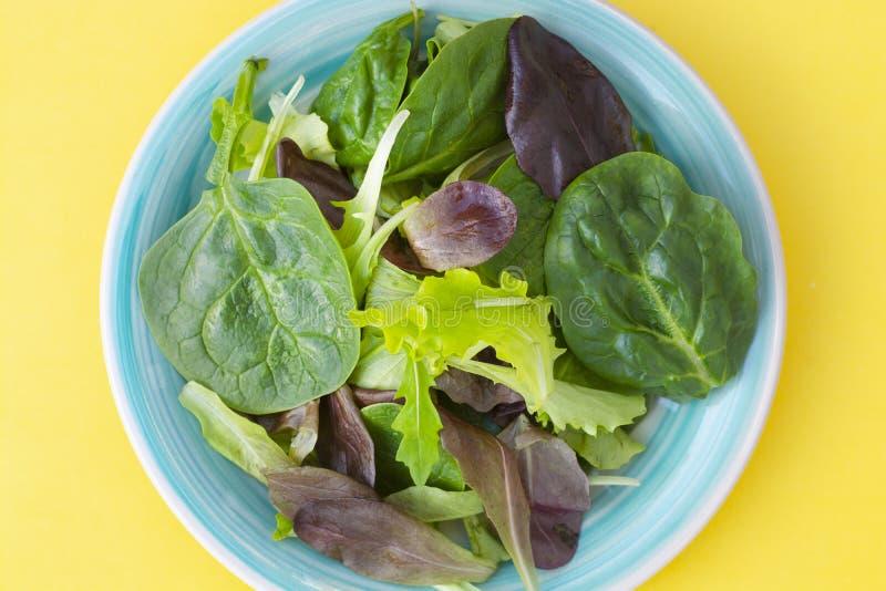 Ensalada verde mezclada fresca en la placa redonda, fondo amarillo colorido Comida sana, concepto de la dieta Visión superior, es imagen de archivo libre de regalías
