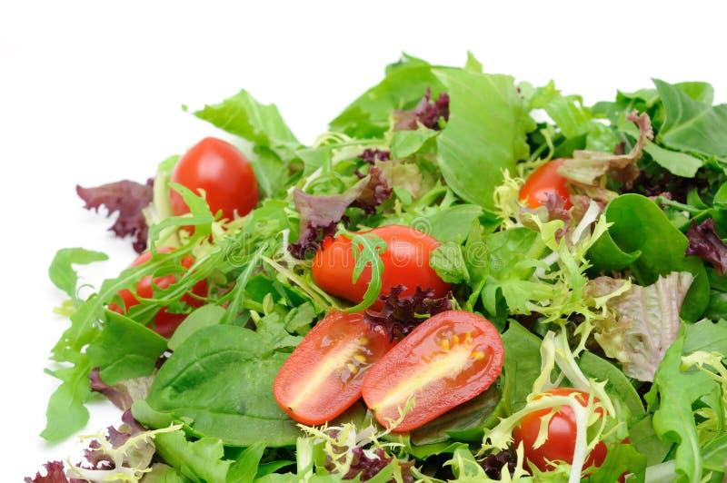 Ensalada verde y tomates imágenes de archivo libres de regalías