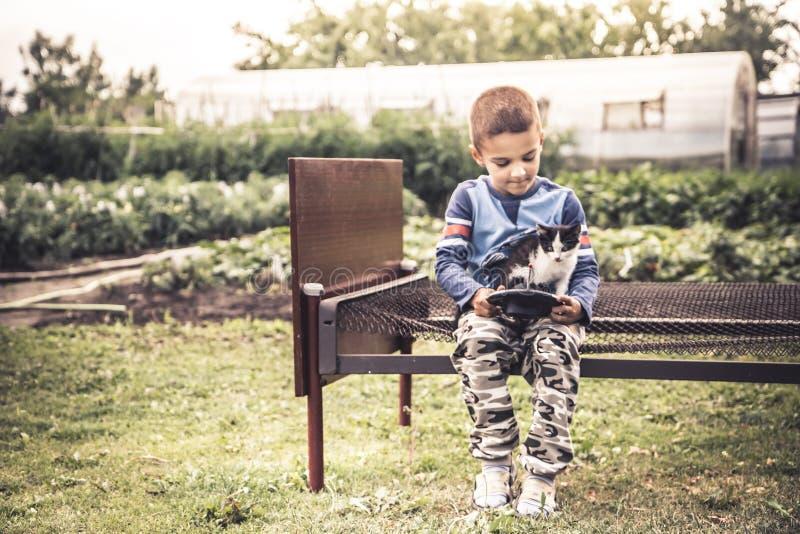 Ensam barnungepojke som spelar ensamhet för begrepp för kattungebygdlivsstil och kamratskap för husdjuromsorg arkivbilder