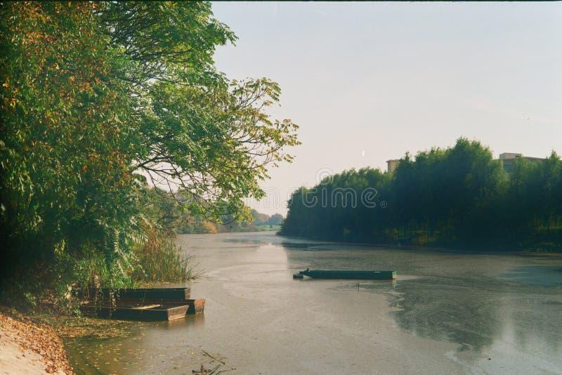 ensam flod arkivfoton