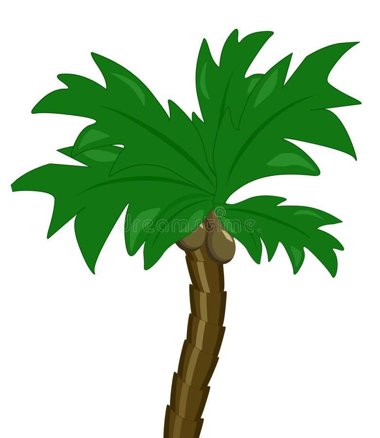 ensam kokosnöttree vektor illustrationer