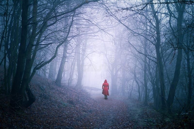 Ensam kvinna i mörk skog royaltyfri fotografi