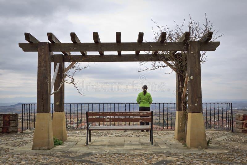 Ensam kvinna som ser landskapet royaltyfri foto