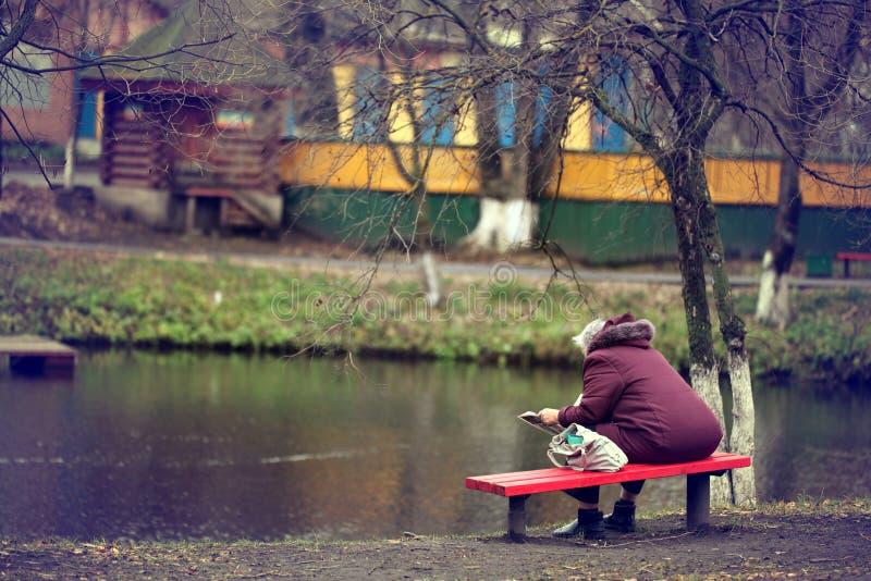 Ensam man på bänkhösten, vinter fotografering för bildbyråer