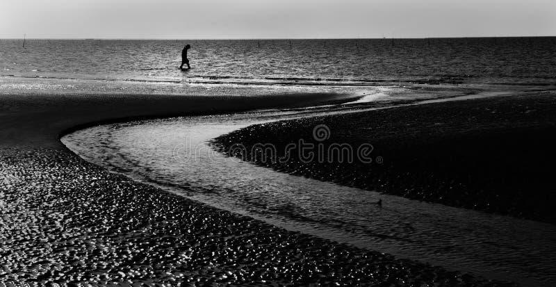 Ensam man som går på sjösidan arkivfoto