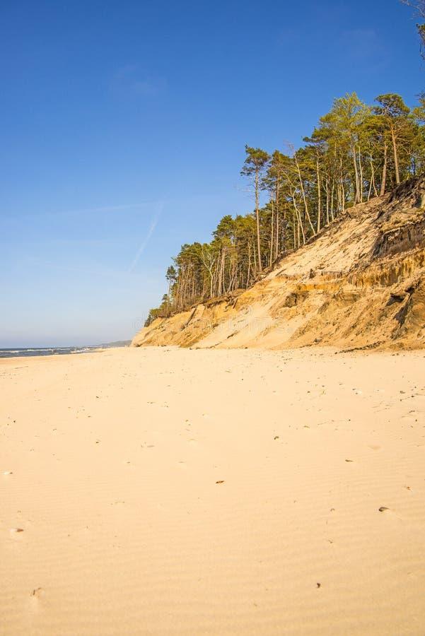 Ensam opåverkad strand av Östersjön royaltyfri foto