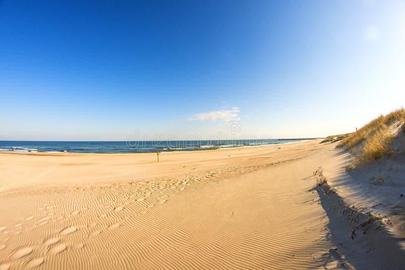 Ensam opåverkad strand av Östersjön arkivbilder