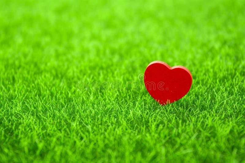 Ensam röd hjärta fotografering för bildbyråer
