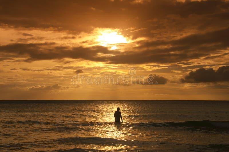 Ensam silhouette på havssolnedgången royaltyfri bild