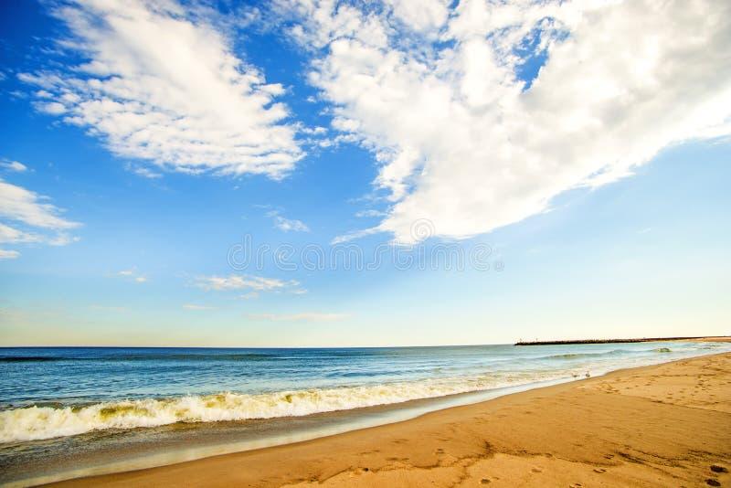 Ensam strand av Östersjön arkivfoto