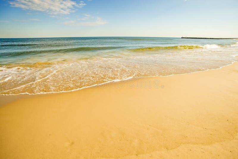 Ensam strand av Östersjön royaltyfri foto