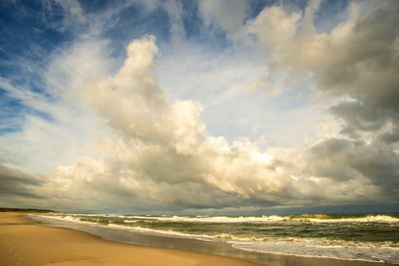 Ensam strand av Östersjön med molnig himmel fotografering för bildbyråer